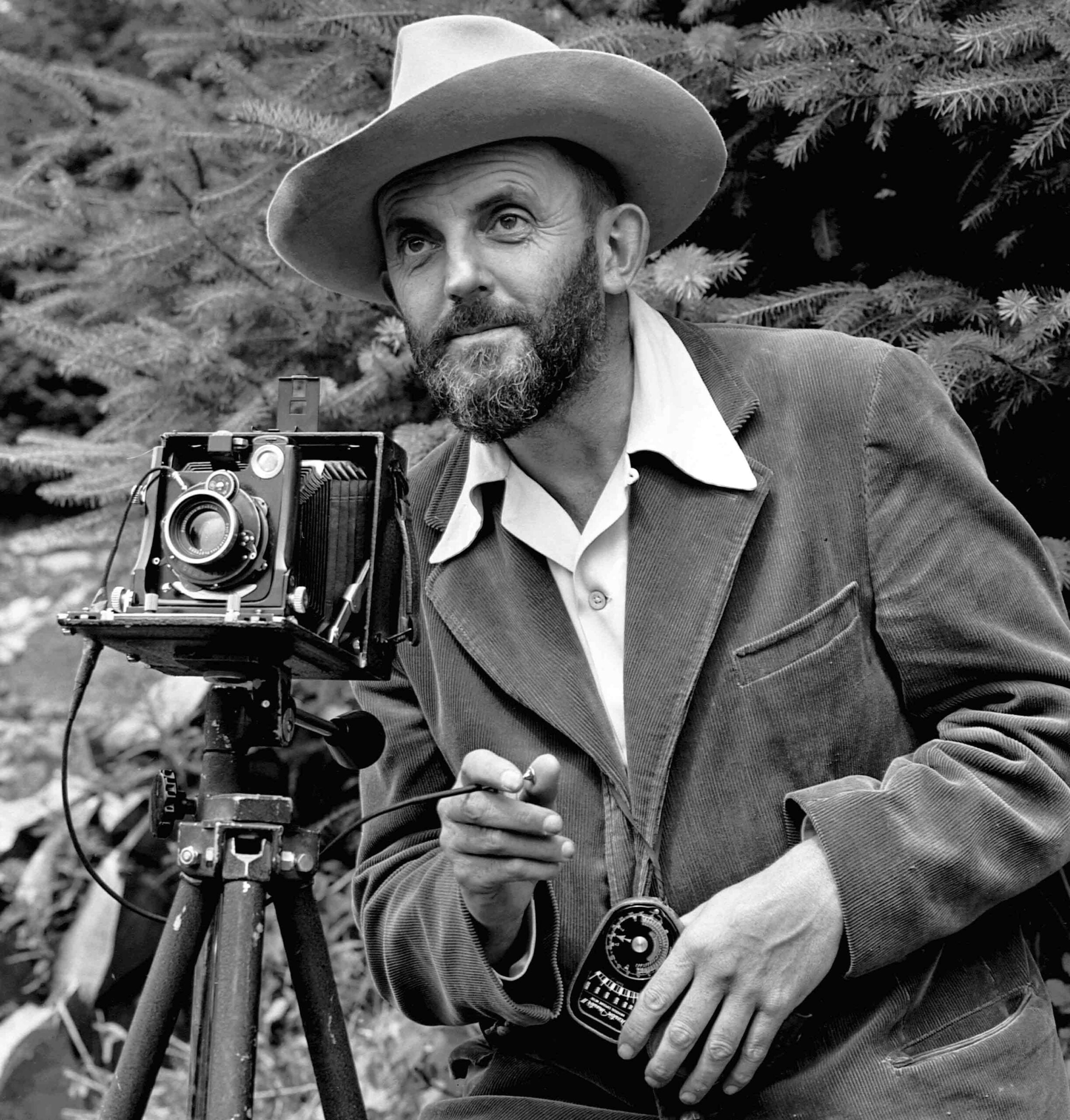 Ansel_Adams picture