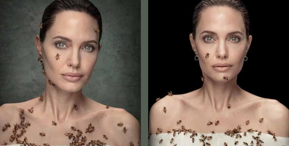 Anjelina-Jolie-Photo-Shoot-with-Bees