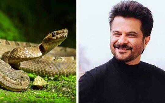 Anil-Kapoor-Drink-Snake-Blood
